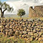 Muro a secco: cos'è, tempi di lavorazione e costi